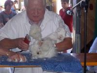 Kleintierzüchterfest 20.07.2003