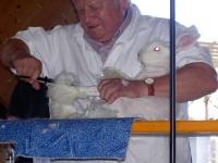 Kleintierzüchterfest 2003_5